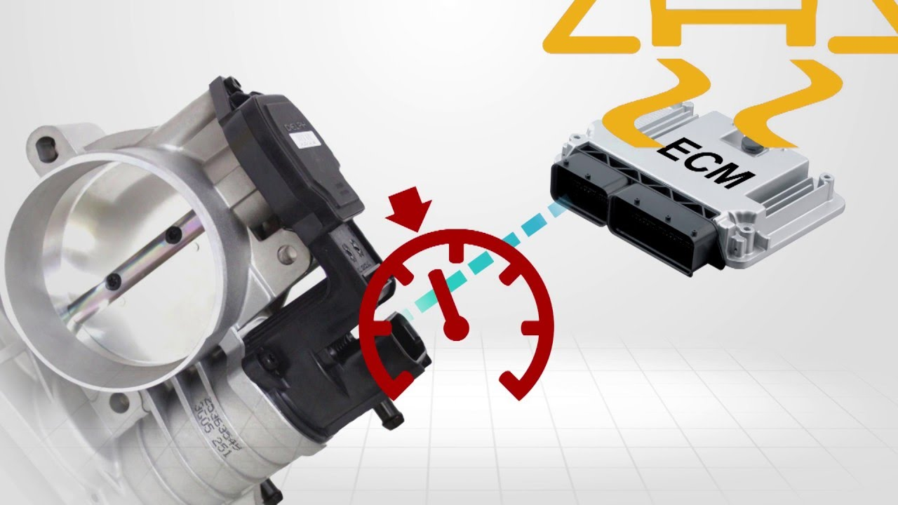 Throttle Actuator Control Systems