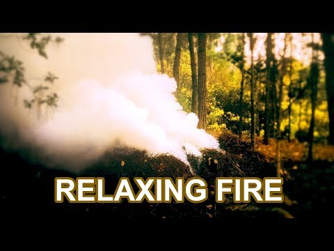 RELAXING FIRE - Perfect to Calm down your stress levels