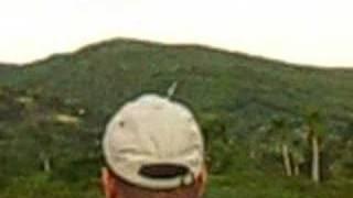 sig kougar,vuelo rc gurabo santiago republica dominicana
