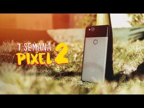 1 SEMANA com o PIXEL 2 - É isso tudo mesmo? @googlebrasil