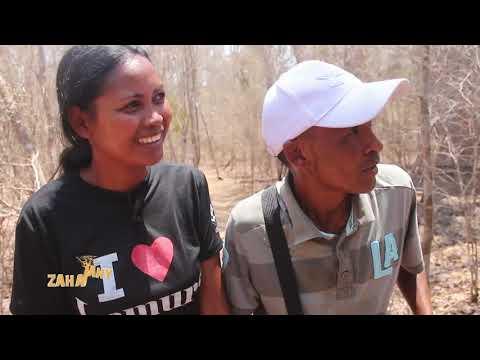 Zahatany 14 Décembre 2019 - Kirindy Forest - Morondava