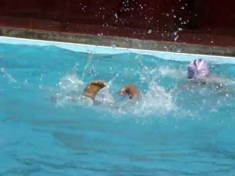 SWIMMING ADVANCE TRAINING CLASSES IN BANGALORE