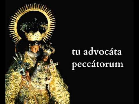 Tota Pulchra es Maria ( Canto Gregoriano )