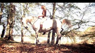 riding bitless on horse that was trained with bit