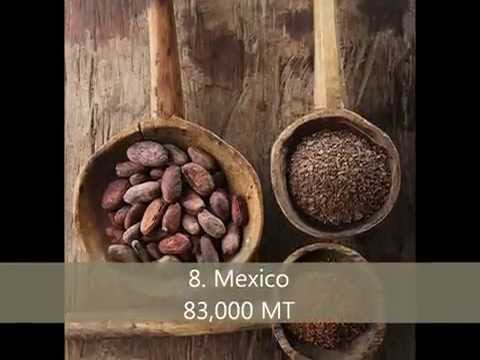 Top 10 cocoa bean producing countries