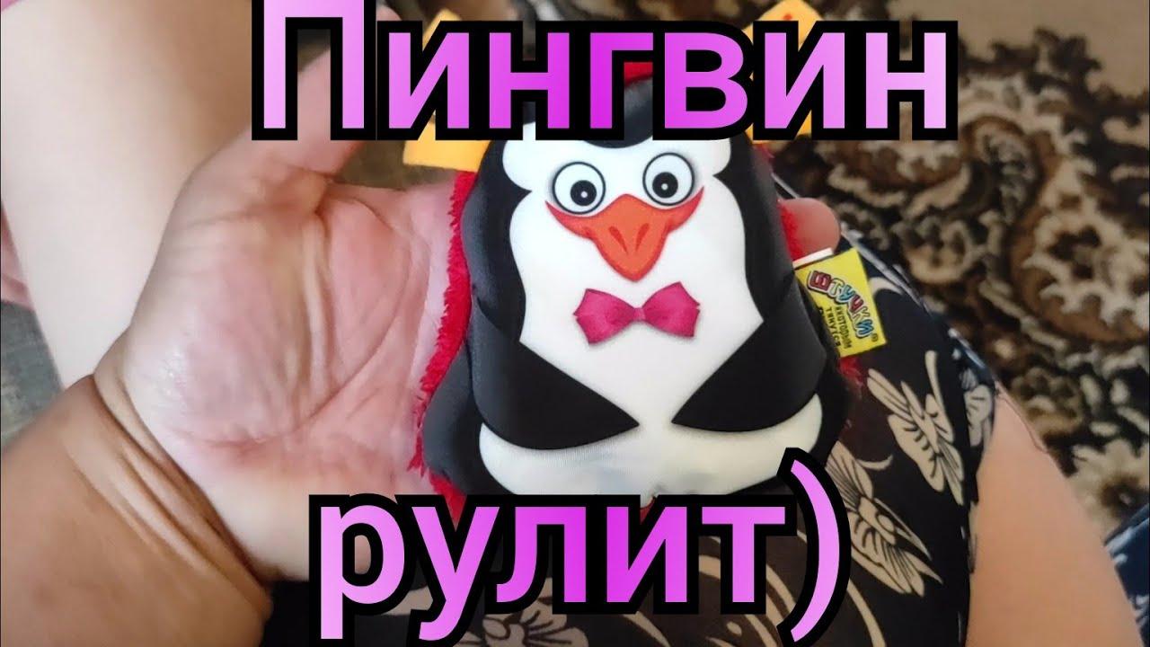 Любимый Василек. Детское счастье за 133рубля.
