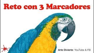 RETO CON 3 MARCADORES - Una guacamaya