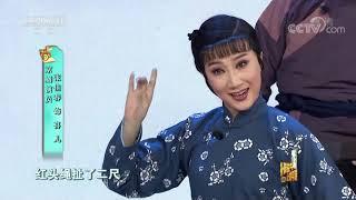 [梨园闯关我挂帅]京剧《白毛女》选段 演唱:赵保乐  CCTV戏曲