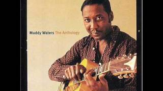Muddy Waters - Sitting And Thinking Live! 60