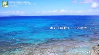 ACOON HIBINO / VOYAGE 「心と体を整える~愛の周波数528Hz~」より