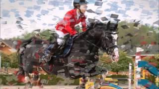 Emanor koń dla juniora na sprzedaż! / for sale!