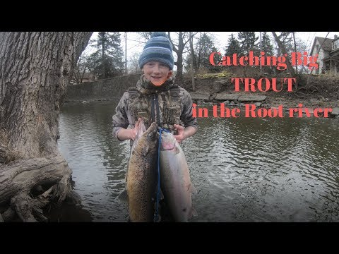 Fishing STEELHEAD and BROWN trout on the root river