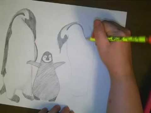 draw emperor penguins youtube