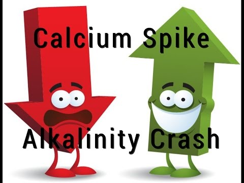 Calcium Spike / Alkalinty CRASH - In Reef Tank