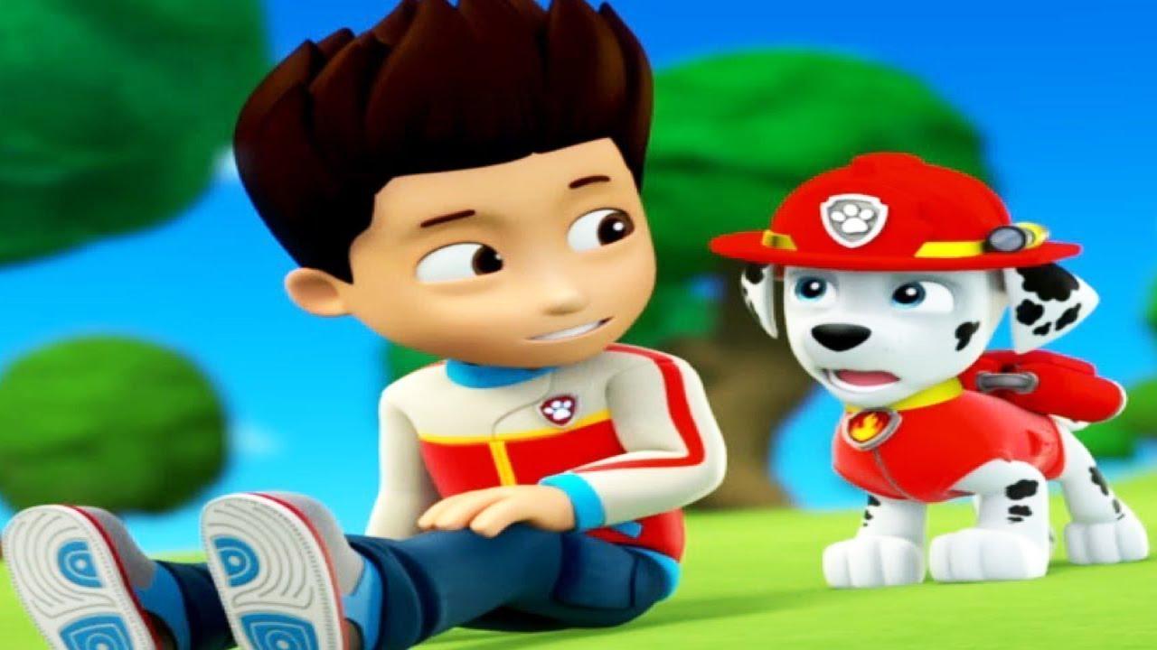 paw patrol cartoon full episodes disney junior compilation