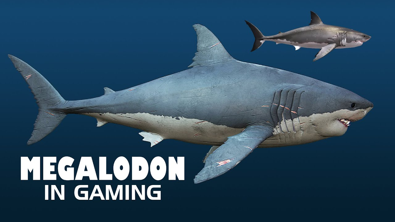 the gallery for gt megalodon shark compared to titanic