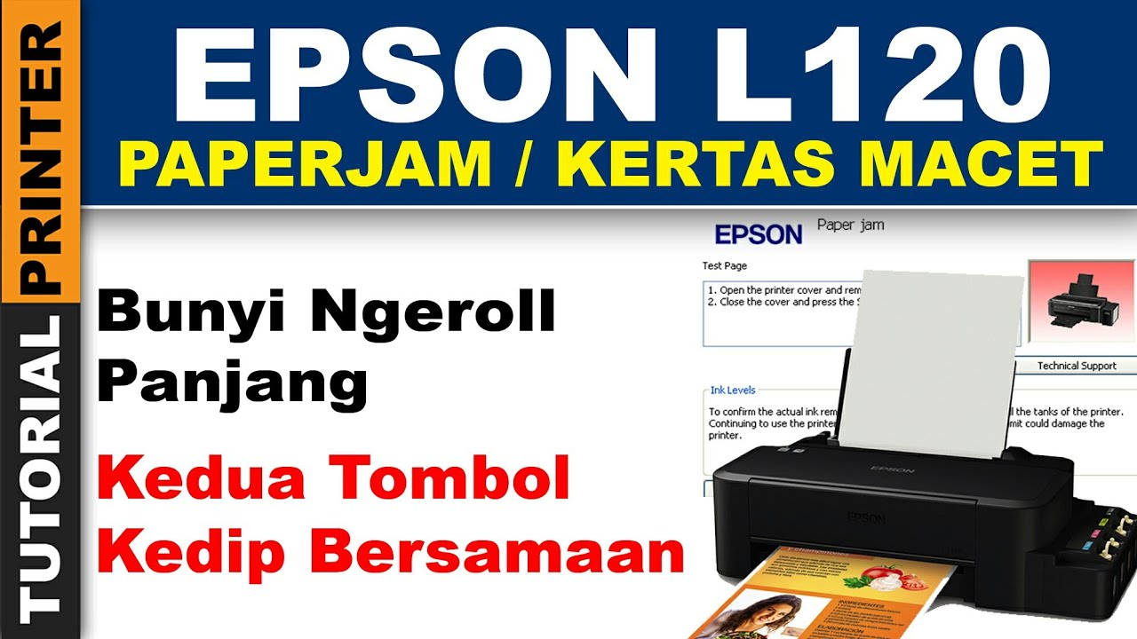 Epson L120 Kedua Tombol Kedip Paper Jam, L110,L300,L350,L355, L110, L210,