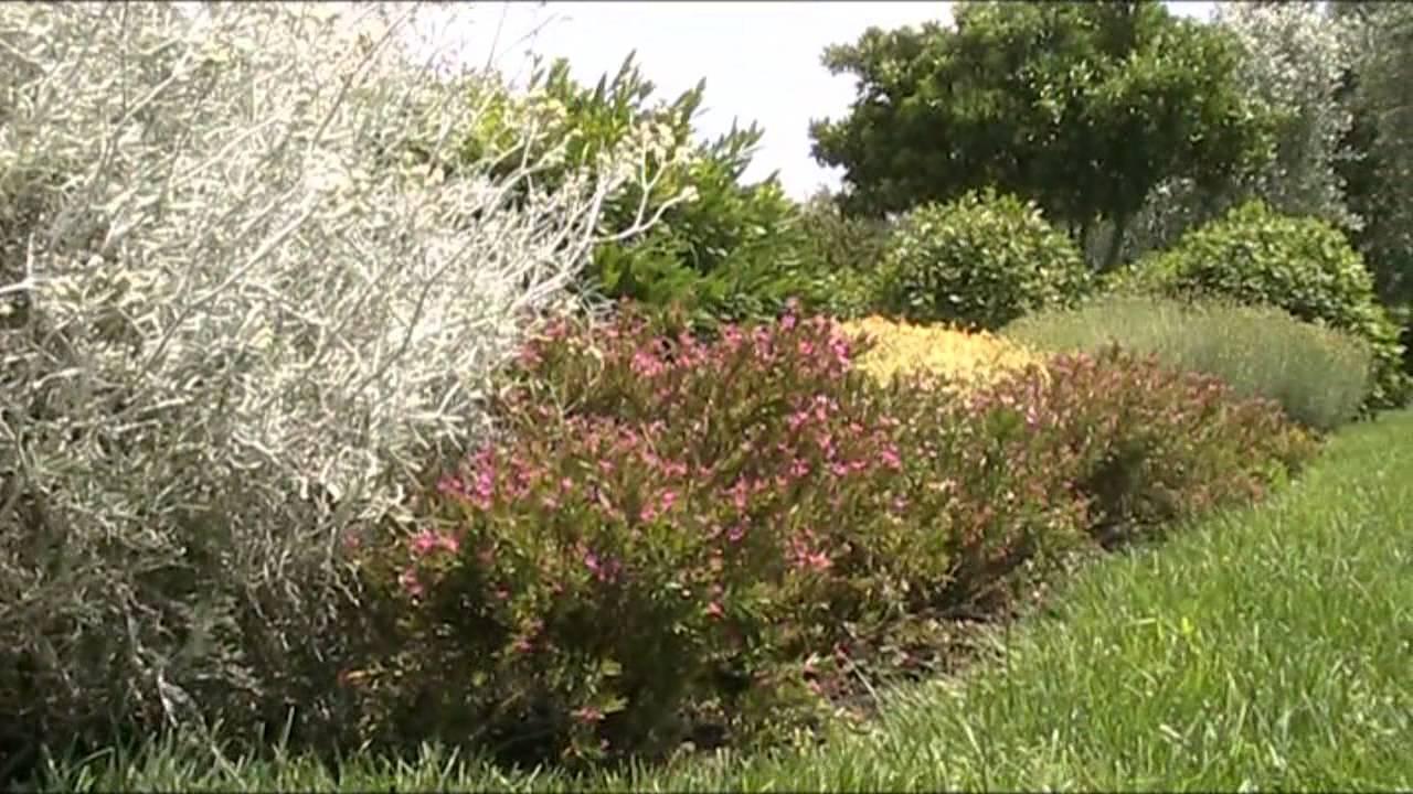 Il giardino della sposa lectio su abramo e sarah youtube - Il giardino della sposa ...