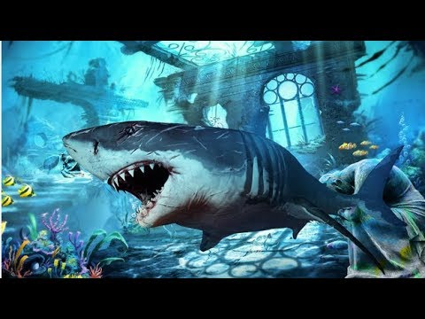 Blue Whale 2017 - Angry Shark World (By 4wheelgames) Android Gameplay HD