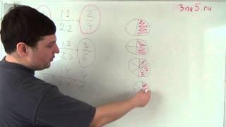 Основное свойство дроби. Математика 5 класс.