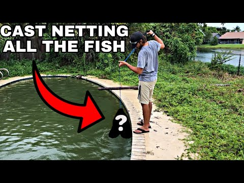 Netting EVERY Fish From Abandoned Pool!!!