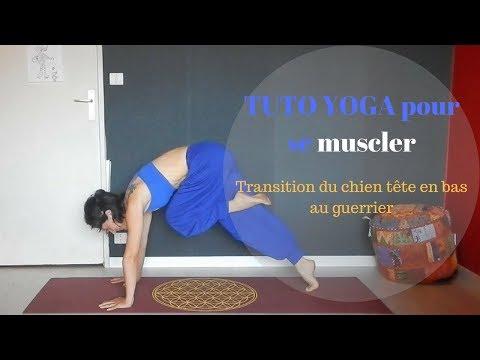 Yoga tutoriel : Transition entre chien tête en bas et la posture du guerrier