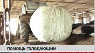 Помощь голодающим. Новости. 17/04/2017. GuberniaTV