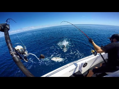 FISHING THE GREAT BARRIER REEF GT PACK ATTACK DAY 1