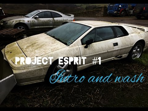 Project Esprit #1 Introduction to the barn find