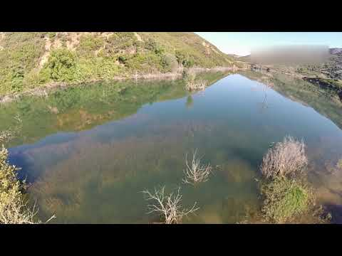 The crocodile of Crete filmed by drone!!!!