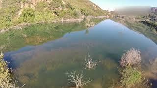 The crocodile of Crete filmed by drone!!!!