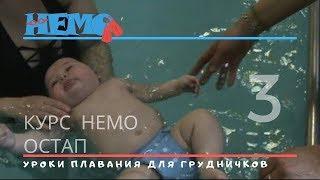 Уроки плавания для грудничков. НЕМО #3 Остап. Baby swim lessons.
