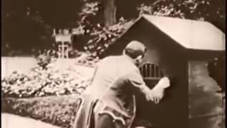 Макс боится собак 1909 год