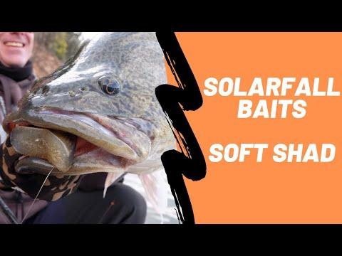 Solarfall Baits, Premium Swimbaits Now At Ebb Tide Tackle