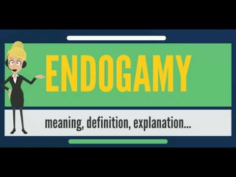 endogamous marriage