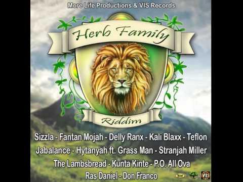 Delly Ranx - Sweet Reggae [Herb Family Riddim | VIS Records 2014]