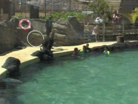 Baku Waterpark II - Animal Experience @ Fuerteventura
