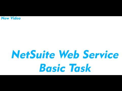 NetSuite Web Service 101 Add WSDL to VS