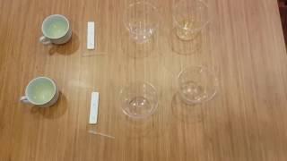 Ev yapımı gebelik testi- çamaşırsuyu ile gebelik testi bölüm 1