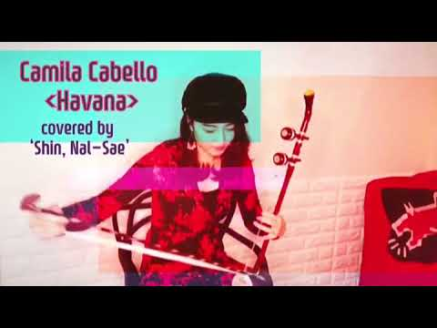 Camila Cabello - Havana (covered By Shin Nal Sae 신날새 해금)