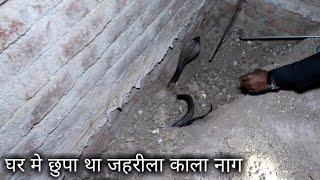 घर मे छुपा था एक जहरीला सांप, फिर क्या हुआ आप ही देखिये | A Venomous snake was hidden in the house