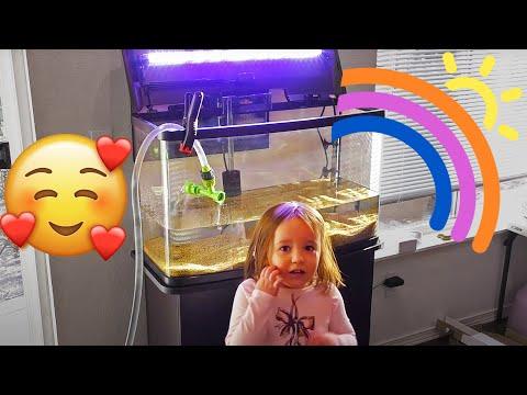 Set up her first Aquarium. Kids and Family Aquarium Project.