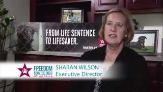 Freedom Service Dogs - Training Video 1