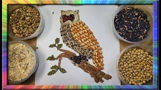 Burung Hantu Membuat Lukisan Kolase Dengan Biji Bijian The owl collage mosaics   kids collage tutori
