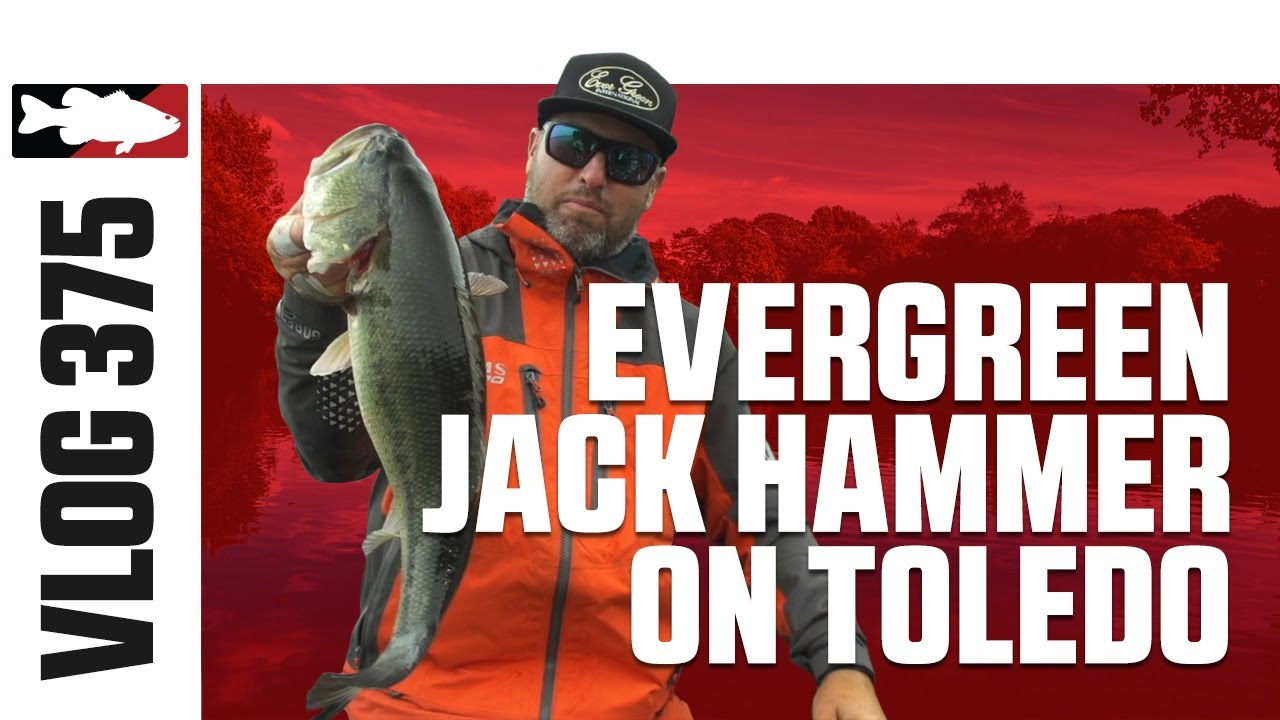 Video vault brett hite fishing the z man jack hammer for Hammer jack fish
