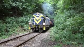Kolej w Górach Sowich. Tunele i pociagi towarowe.