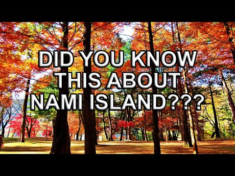 8 Interesting Facts You Must Know Before Visiting Nami Island (남이섬)