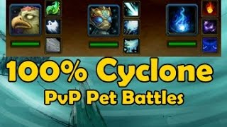 100% Cyclone - Pvp Pet Battles