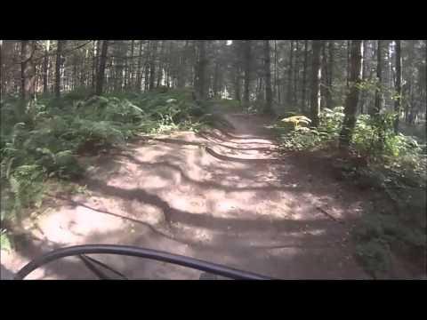 22 08 2015 Nottingham Sherwood forest Kichener Trail