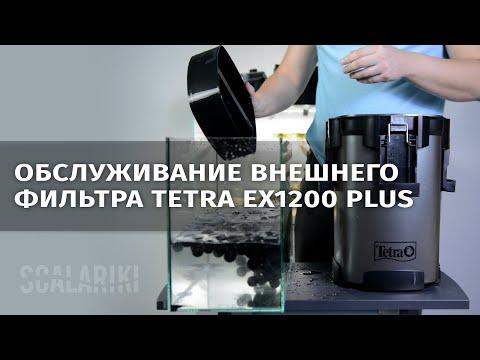 Как я обслуживаю внешний фильтр Tetra Ex1200 Plus. Видео-ответ Виталию Green Art